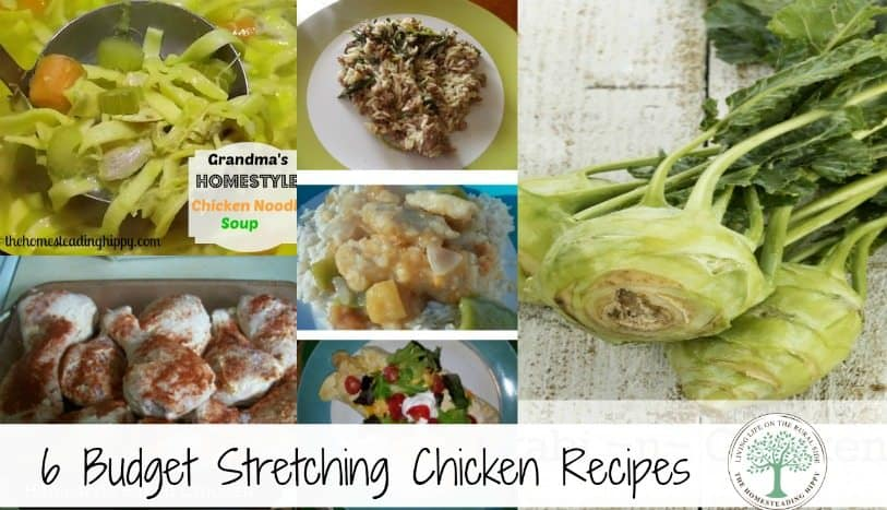 Stretch those whole chickens into 6 delicious, budget friendly meals! Here are my favorites~TheHomesteadingHippy #homesteadhippy