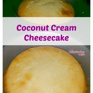 Cheesecake gets a makeover in this gluten free, honey sweetened, coconutty good version. The Homesteading Hippy #homesteadhippy #fromthefarm #glutenfree #coconut #cheesecake #recipe