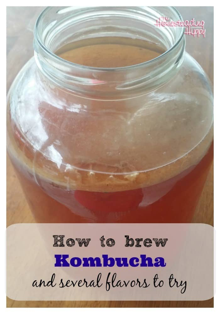 How to Make Different Kombucha Flavors