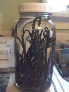 vanilla beans in jar