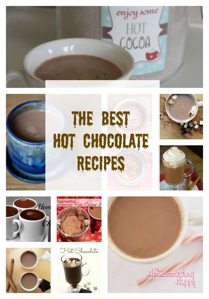 Not just for winter, hot chocolate is a delicious beverage you can enjoy year round. Here are some of the best recipes I have found! The Homesteading Hippy #homesteadhippy #fromthefarm #recipes