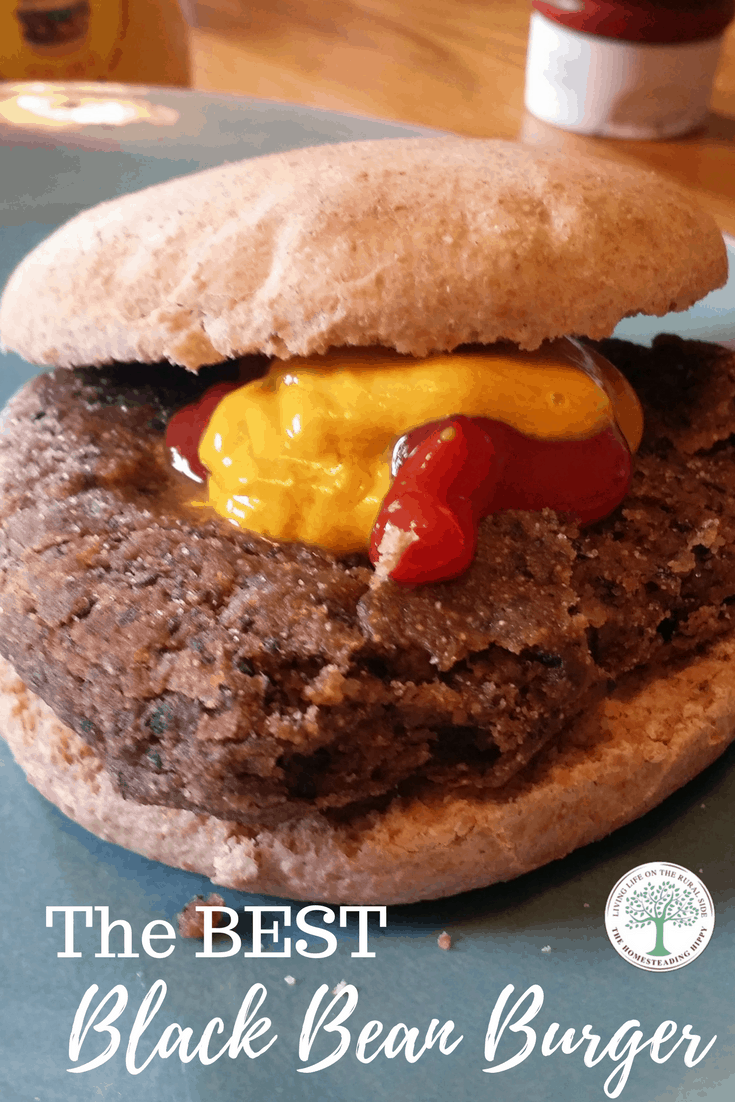 Delicious, nutritious AND vegan! Sub red meat for a high protein black bean and make a wonderful black bean burger recipe that will leave your tastebuds singing!