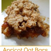 Gluten Free Dairy-Free Apricot Oat Bars