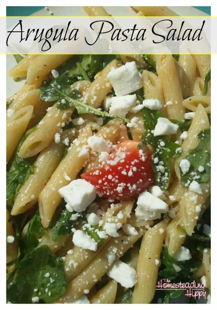 This pasta dish with fresh arugula and tomatoes, combined with garlic and olive oil just screams spring time to me!  The Homesteading Hippy #homesteadhippy #fromthefarm #recipes