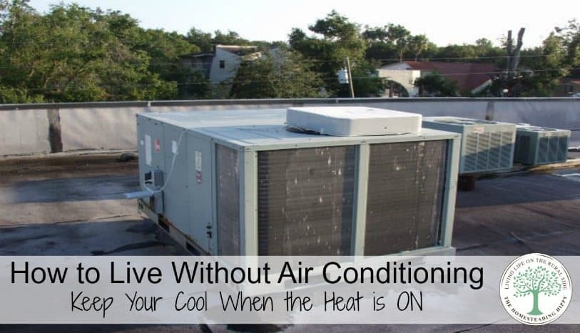 You can learn to live without air conditioning in the summer heat...really! Here are some tips to help you keep your cool when the heat is on! The Homesteading Hippy
