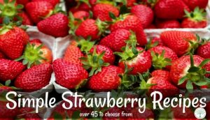 strawberry recipes post