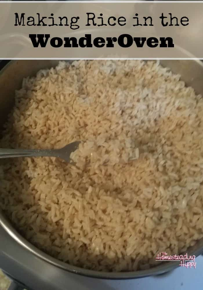 How To Make Rice in the WonderOven