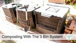 3 bin system post