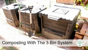 3 Bin Composting System