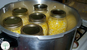 Corn is a vegetable that you can freeze, or process by canning to preserve. It retains is natural sweetness and is easy to reheat in boiling water for a fresh picked flavor that can't be beat. You can freeze it on or off the cob. Either way is fairly simple.