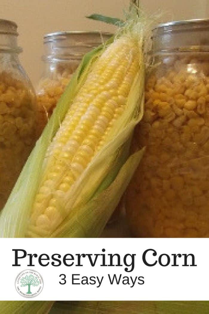 Preserving Your Garden Corn