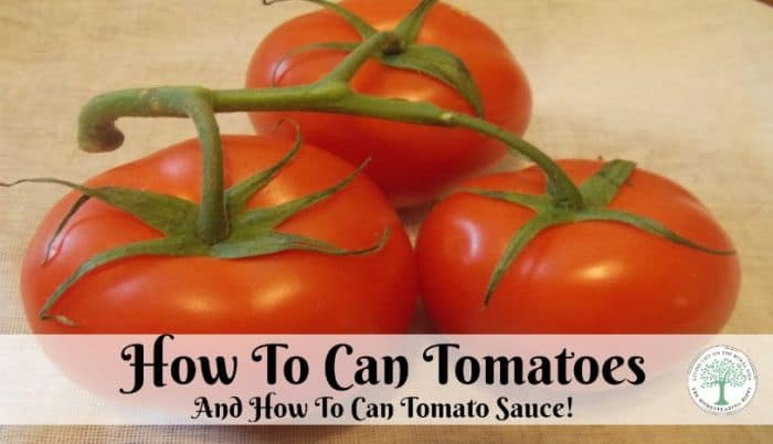 can tomatoes post