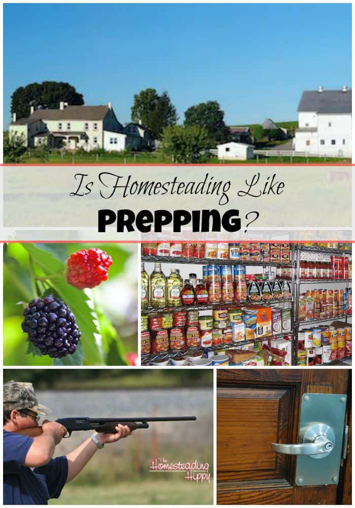 Are homesteading and prepping synonymous? Learn the ways that they are the same, and the ways they are different here! The Homesteading Hippy #homesteadhippy #fromthefarm #prepping
