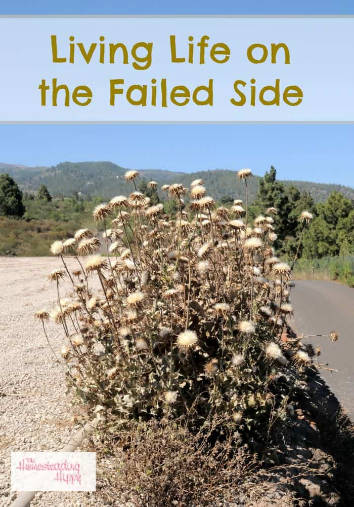 living life on the failed side The Homesteading Hippy #homesteadhippy #fromthefarm #truth #homesteadfailures