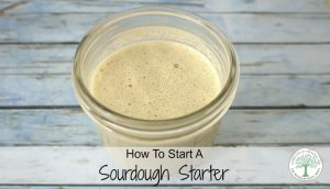 Starting a Sourdough Starter for Yourself