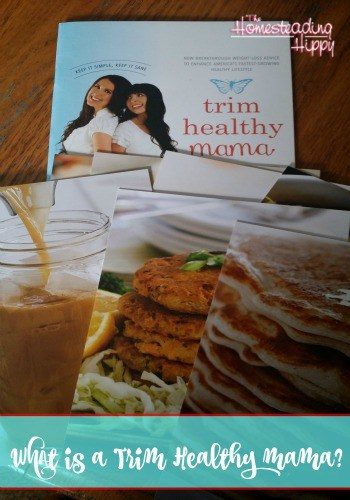 What's A Trim Healthy Mama? #momsmeet #thm
