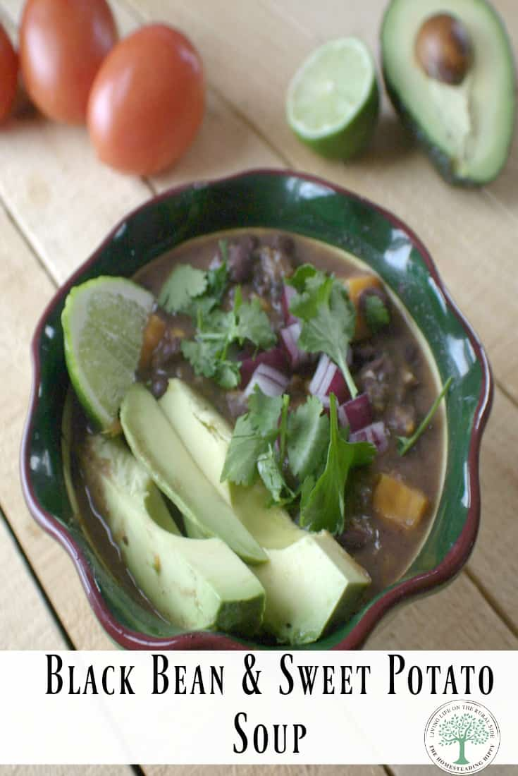 Try this hearty, filling southwestern vegetarian black bean soup! Full of protein and so yummy! #lowfat #vegetarian #soup #blackbean #crockpotsoup #weeknightdinner