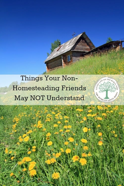 The life of a homesteader can be so satisfying.  But, what about those who don't homestead?  Will they understand these things? The Homesteading Hippy #homesteadhippy #fromthefarm