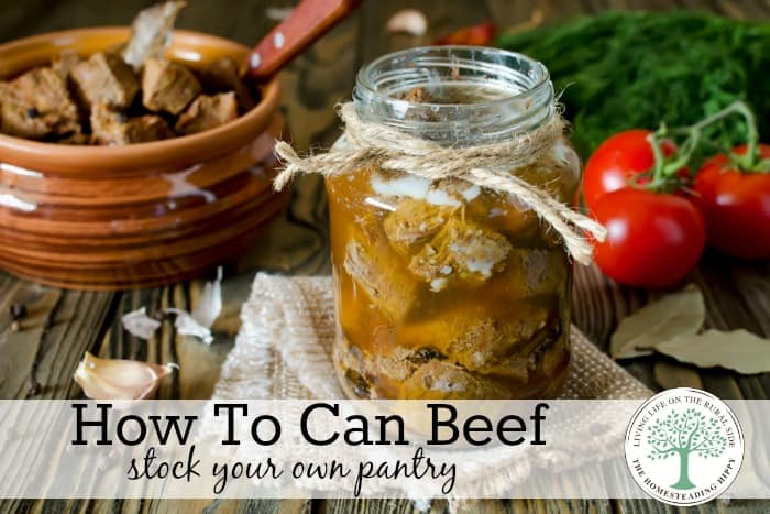 Pressure Canning Beef {Stock Your Own Pantry}