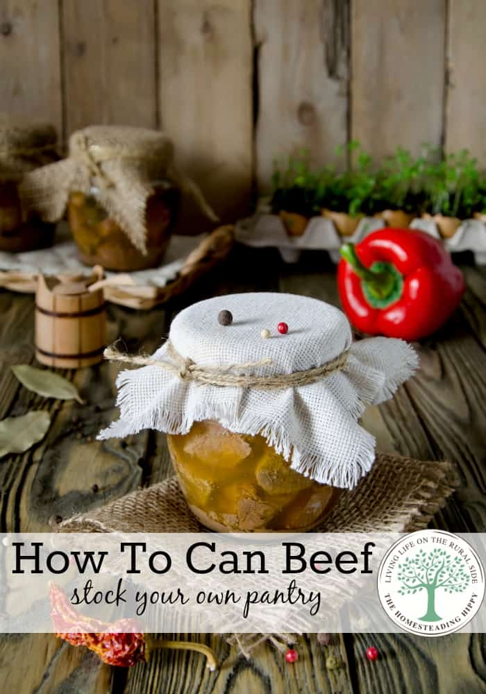 Stock your own pantry when beef goes on sale by canning it for later! The Homesteading Hippy #homesteadhippy