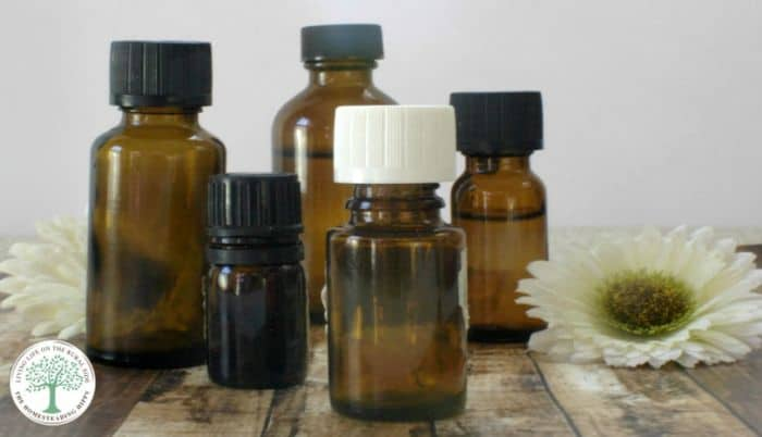 Herbal Medicine Chest for Beginners {What To Have In There