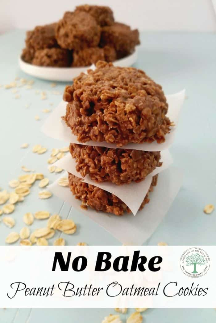 no bake cookies pin