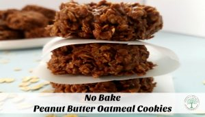 Peanut butter+chocolate+oatmeal combine to make the ultimate no bake cookie! The Homesteading Hippy