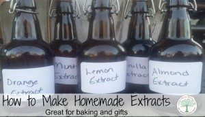 Make your own extracts for delicious baking and gift giving! The Homesteading Hippy #homesteadhippy