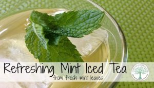 mint iced tea post