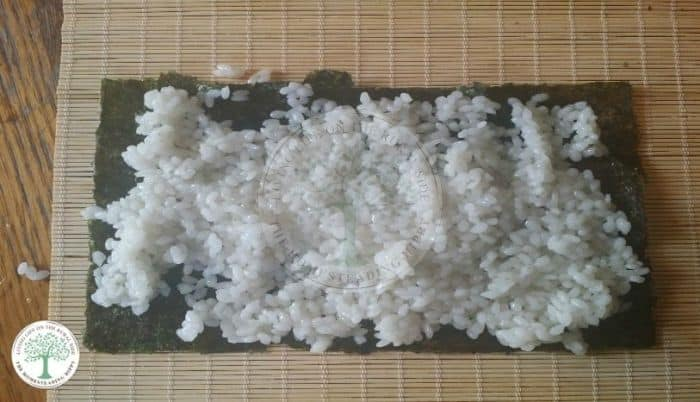 rice on nori
