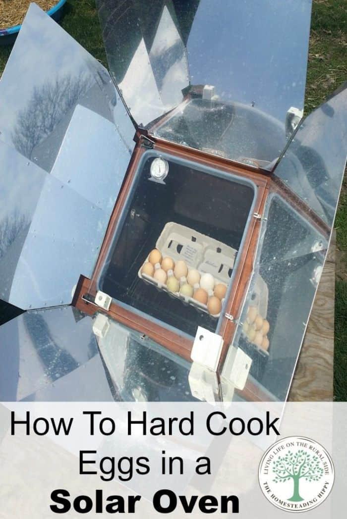 solar eggs vertical