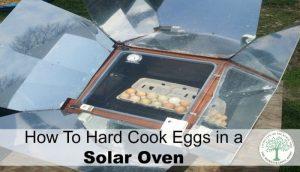 solar oven eggs post