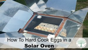 How to Hard Cook Eggs in a Solar Oven
