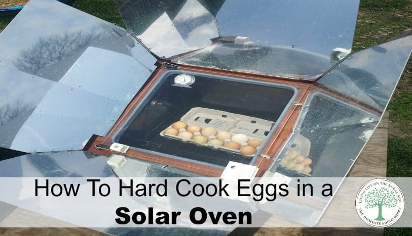 Save money and energy and harness the power of the sun to cook! Try hard cooked eggs in a solar oven today!  The HomesteadingHippy