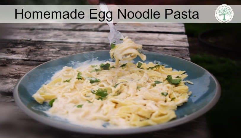 Learn how to make your own egg noodle pasta easily with this video tutorial! The HomesteadingHippy