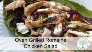 grilled romaine salad post