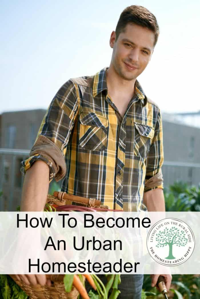 urban homesteader pin