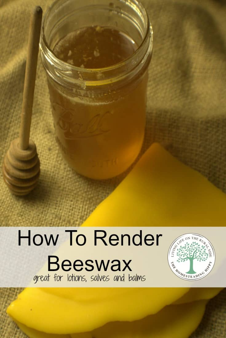 If you keep bees, you'll eventually wind up with a bunch of wax from the combs. Learn how to render it to a golden sheet of wax perfect for lotions, soaps, salves and balms! The Homesteading Hippy