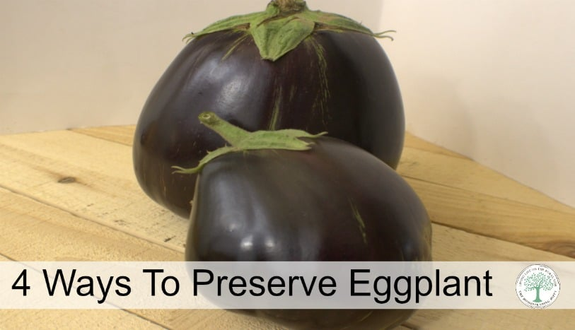 Did you know there were at least 4 ways to preserve eggplant? Really! The Homesteading Hippy