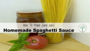 Make And Can Homemade Spaghetti Sauce