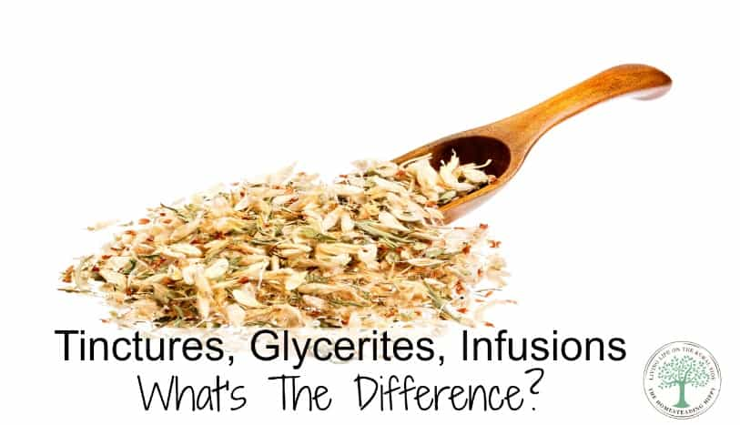So, what is the difference between a tincture, a glycerite, and an infusion? Learn the difference here! The Homesteading Hippy