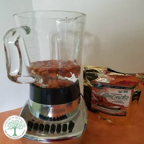 How Is Almond Milk Made-learn to make your own almond milk at home easily! The Homesteading Hippy