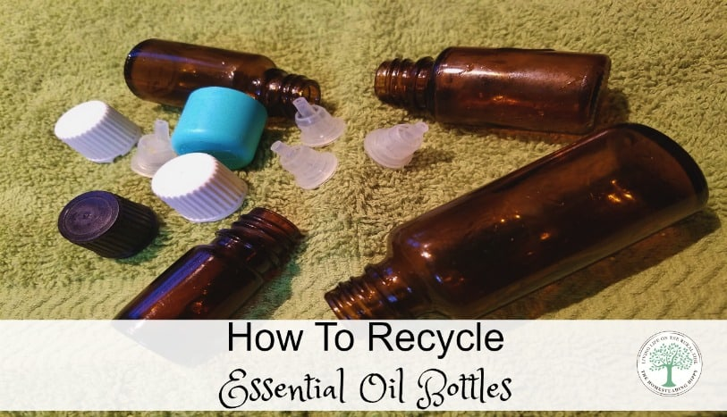 Easy way to clean and reuse your essential oil bottles! The Homesteading Hippy