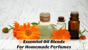 Essential oils can act as a powerful aphrodisiac and incite a positive response in those around you while giving you the powerful benefits from the oil itself. Get some great blend ideas for homemade perfumes! The Homesteading Hippy