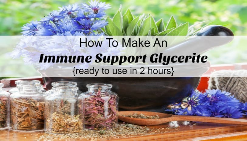 Feel a cold coming on? Make a glycerite that will help support your immune system, ready to use in 2 hours! The Homesteading HIppy