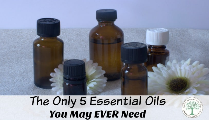 You can get started with 5 basic essential oils and honestly, these 5 oils are the only ones you may truly ever need. The Homesteading Hippy