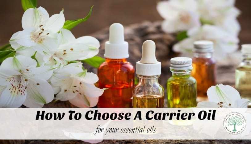 Learn some of the most common carrier oils to make your essential oils safe to use! The Homesteading Hippy
