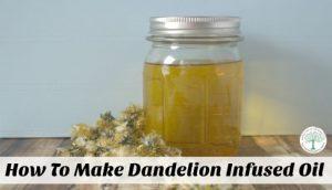 dandelion infused oil post