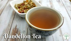 Make a delicious, liver supporting tea from all the weeds in your yard! Try this dandelion tea today! The Homesteading Hippy