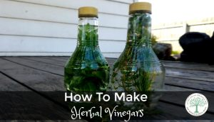 I love making herbal vinegars for that reason. They are so easy to make, and add an extra boost of flavor. Are you ready to make your own herbal vinegar? The Homesteading Hippy